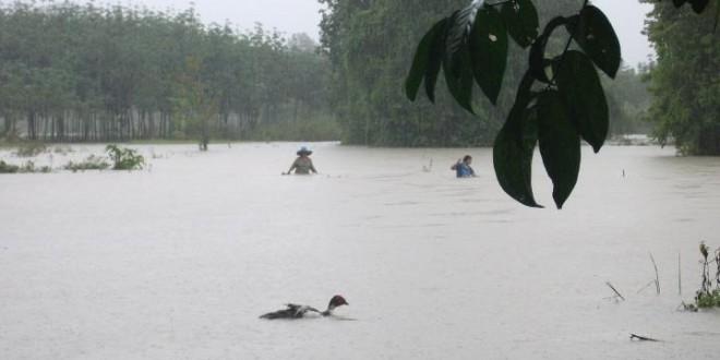 ประกาศ สถานการณ์น้ำท่วม บ้านเกาะใหญ่ จังหวัดสตูล